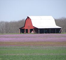 Spring Barn near Bellflower by inventor