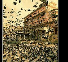 The Birds -uncut by BaciuC