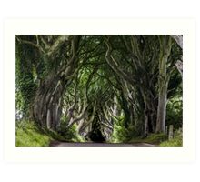 The Dark Hedges - Ireland - Fantastic Print Of Spooky Trees Art Print