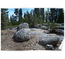 bold rocks in south California forest.  nature photography. Poster