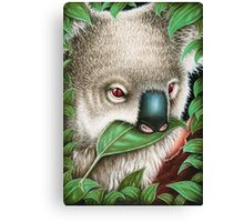 Cute Koala Munching a Leaf Canvas Print