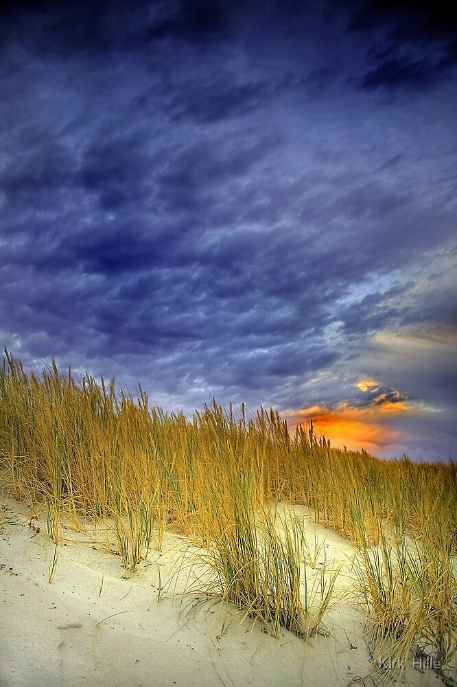 Salt Bushes by Kirk  Hille