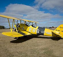 Boeing Stearman by Barrie Collins