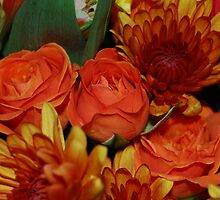 Flowers 1 by Kevin Romano