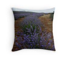 photoj Tas, Lavender Farm Throw Pillow
