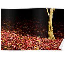 Autumn Trunk Poster