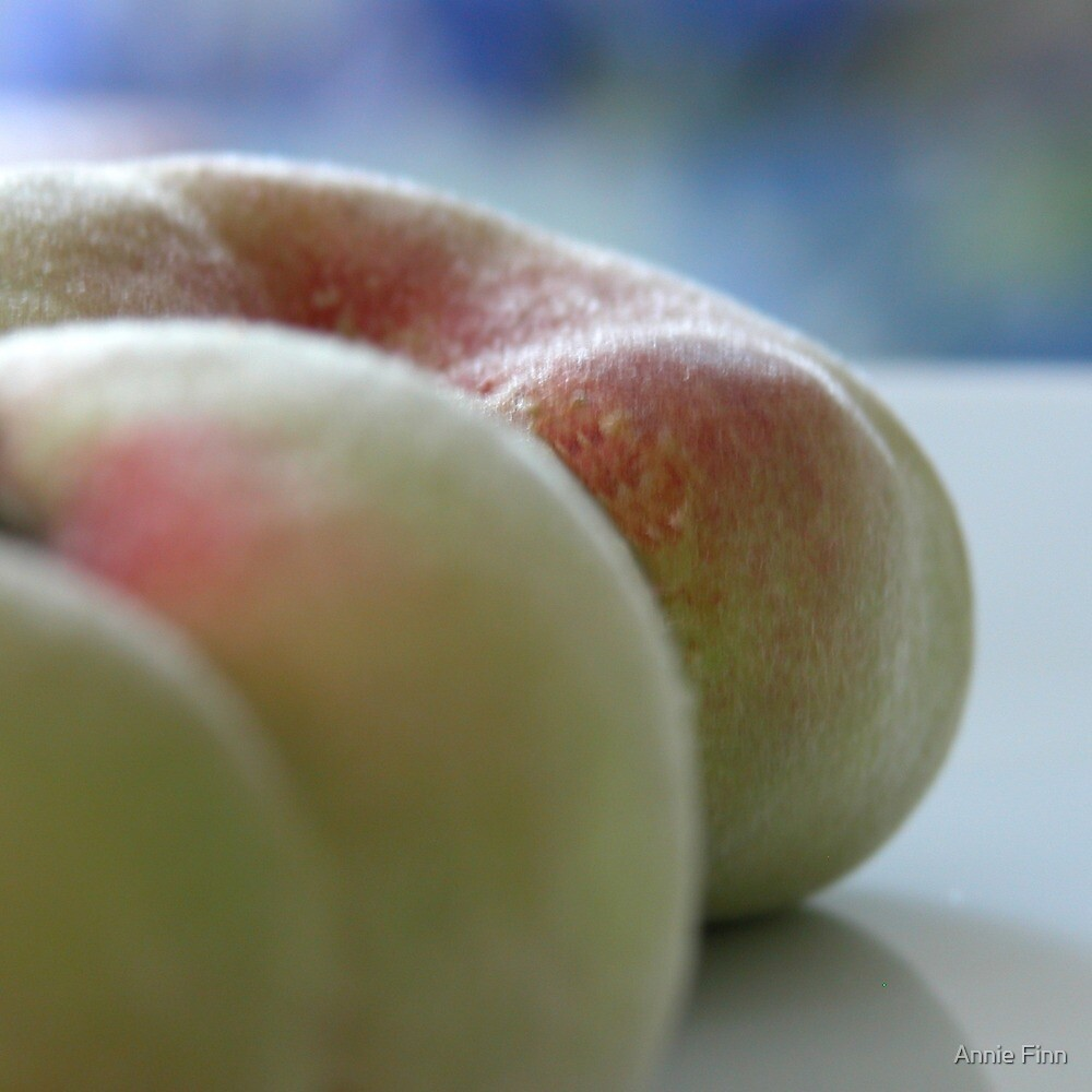 'Summer Peaches' II by Annie Finn