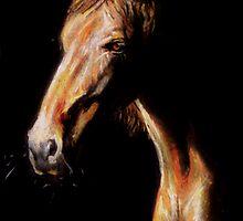 No More Racing by Paula Stirland
