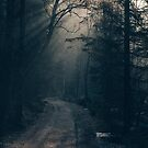 Forest dwarf by Hudolin