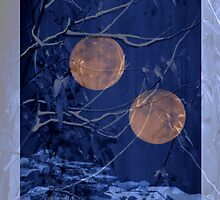 2 moon garden by joshcalebwray