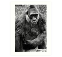 Gorgeous Mother Baby Gorilla Photo Wildlife Print / Print - Black and White Amazing Animal Photo Art Print