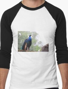 The Peacock - Lovely photo of this colorful bird - animal print Men's Baseball ¾ T-Shirt