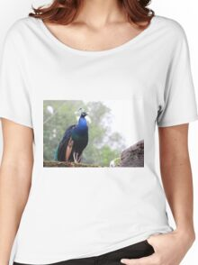 The Peacock - Lovely photo of this colorful bird - animal print Women's Relaxed Fit T-Shirt