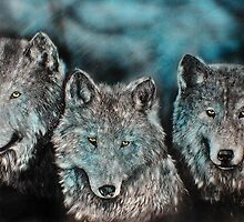 Blue Wolves by Bill Dykes