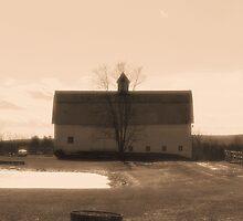 Farmlands by dmosher