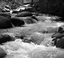 Brandy Creek Black and White by RipleyDigital