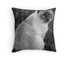 Purr-ty  Throw Pillow