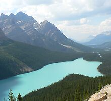 Lake Peyto, Alberta, Canada by Colin & Cathie Townsend