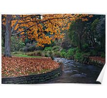 Autumn in the Park Poster