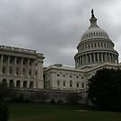 U.S. Capital Building West by Brad Staggs