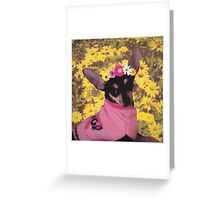 Little Doggie Greeting Card
