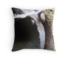 Stay where you are Throw Pillow
