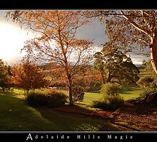 Adelaide Hills Magic by hillsrain