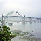 Misty Bridge by paula whatley