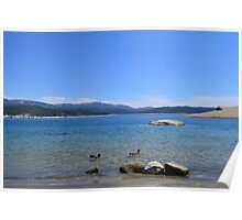 gorgeous and peaceful blue lake, sky, ducks and far away hills. Poster