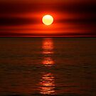 Red sunset over the Indian Ocean by Renee Hubbard Fine Art Photography