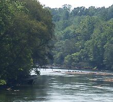 Chattahoochee River by islandpainter