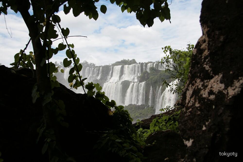 Glimpse of Iguazu falls by tokyoty