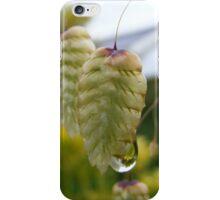 Damp Seed iPhone Case/Skin