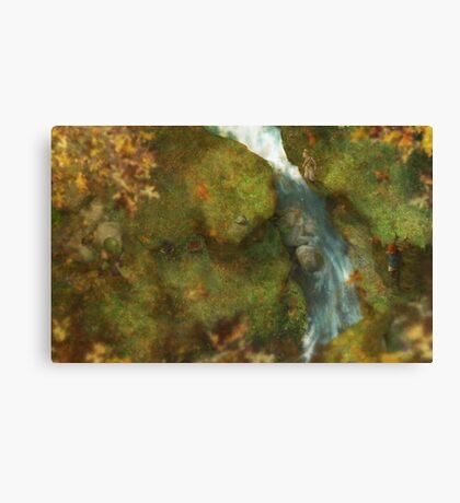 Automnal exploration Canvas Print