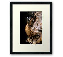 Angel Bird Framed Print