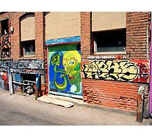 Alley Art Octapus Photographic Print