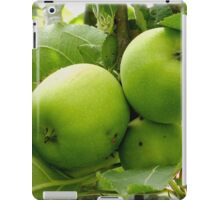 Granny Smith Apples Australian Apples iPad Case/Skin