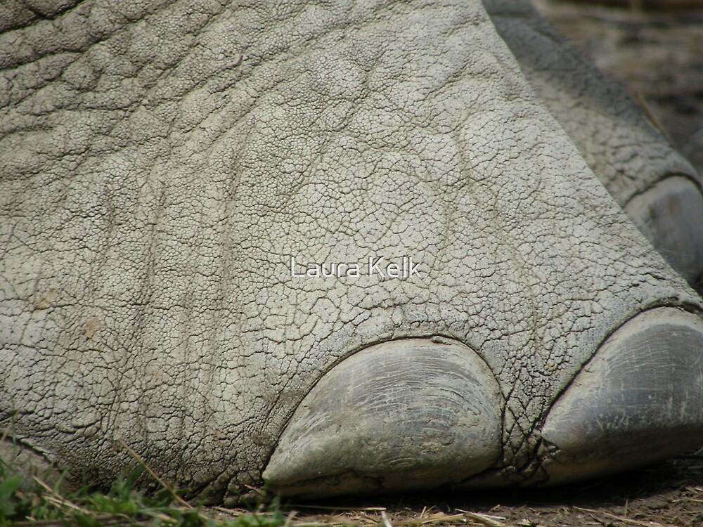 Elephant Toes by Laura Kelk
