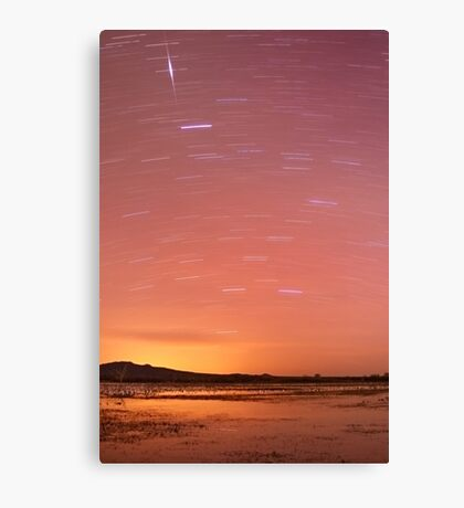 Bosque by Twilight Star Trails Canvas Print