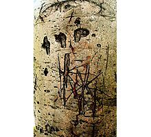 Graffiti Tree#2 Photographic Print