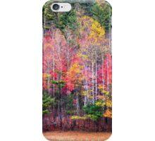 North Carolina Smokies Color iPhone Case/Skin