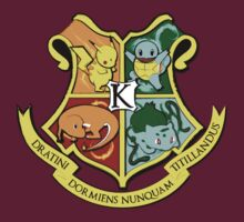 The Kanto School of Witchcraft and 'Rizardry T-Shirt