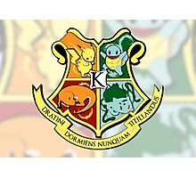 The Kanto School of Witchcraft and 'Rizardry Photographic Print