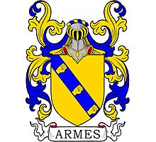 Armes Coat of Arms Photographic Print