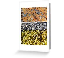I Lichen This One Greeting Card