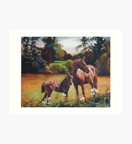 Mum & Foal Art Print