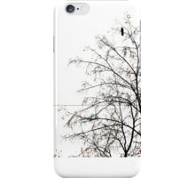 The Crows iPhone Case/Skin