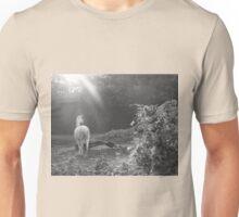 Walk Proud like a Lama  Unisex T-Shirt