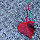 Tainted Love by iamelmana
