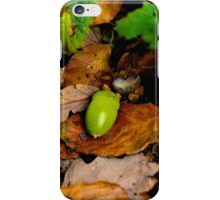 Autumnal Acorn iPhone Case/Skin